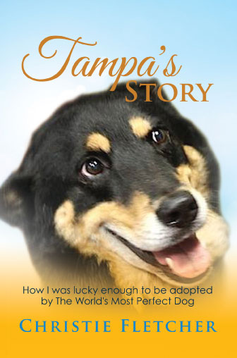 Tampa's Story by Christie Fletcher