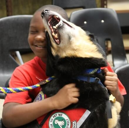 Tampa The Dog gives love to a child